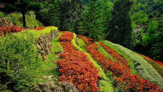 Terrazas-De-Flores-Botanical-Garden